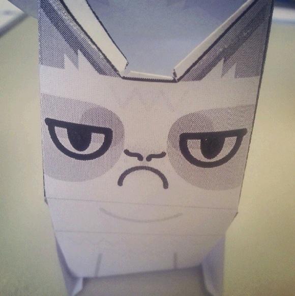 Grumpy Cat Is Still Grumpy